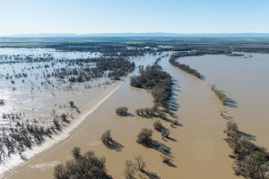 Aerial view of floodwaters overtopping the Fremont Weir in Knights Landing, Calif.